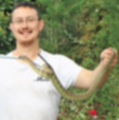 Mark Pelley Snake Hunter in Whittlesea