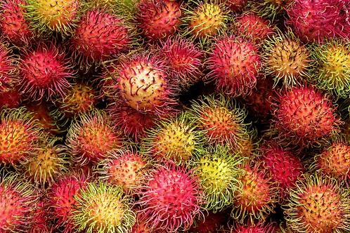 Malaysian Rambutan Box