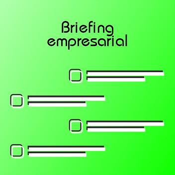 Creación de Briefing empresarial