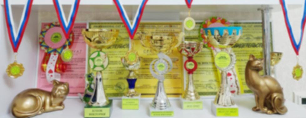 Наши выставочные награды