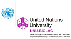 UNU_editado.png