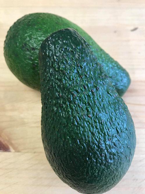 Avocado (Fuerte)