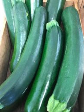 Large Green Courgette