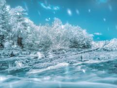 Fake winter - Infrared