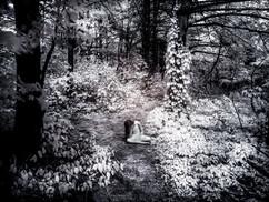 Petit fantôme dans la forêt