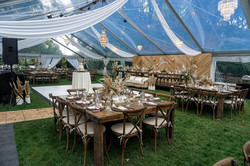 Clearspan Clear Top Tent