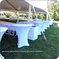 Wedding Reception at Ewing Manor
