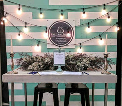 Teal and White Wood Backdrop