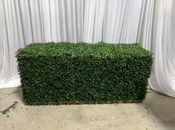 Boxwood Bench