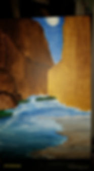1Judy Hall-Folde-santa elena canyon.jpg