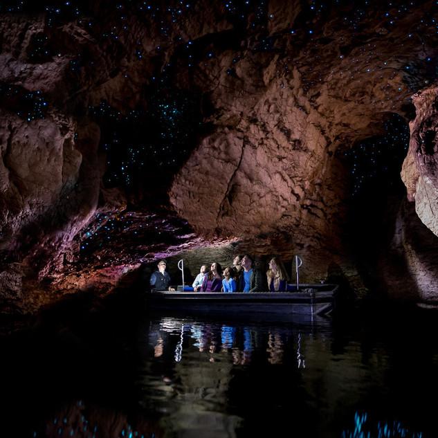 テ アナウ洞窟(土ボタル)