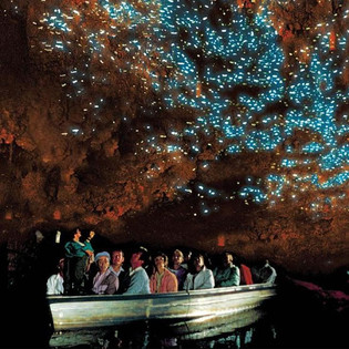 日帰りツアー ワイトモ洞窟