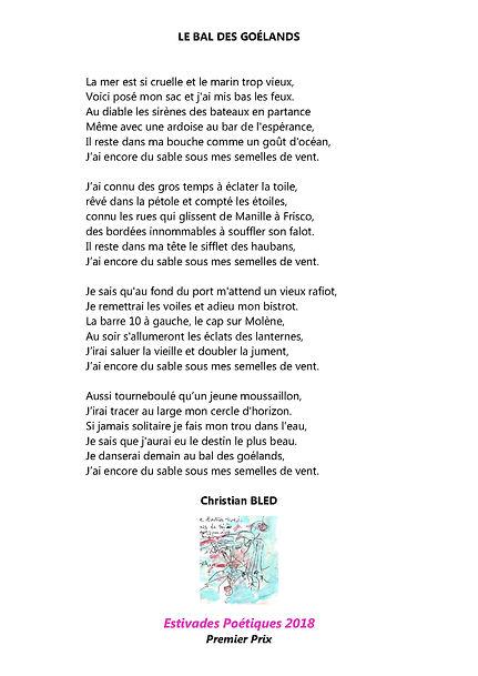 LE_BAL_DES_GOÉLANDS.jpg