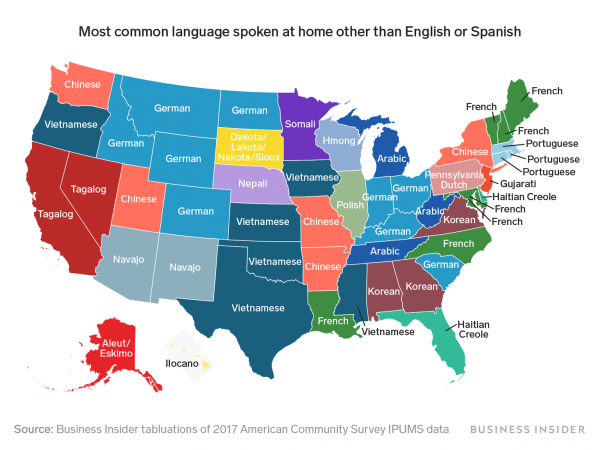 map showing non-English usage by state