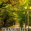 Thumbnail: Tranquility DVD