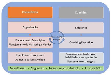 Imagem_esquem%C3%A1tica_coaching_edited.
