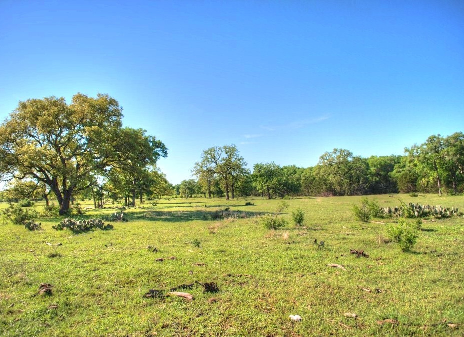 Ranch land for sale