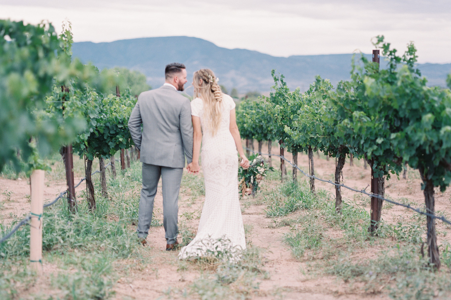 Alcantara Vineyards, Cottonwood AZ