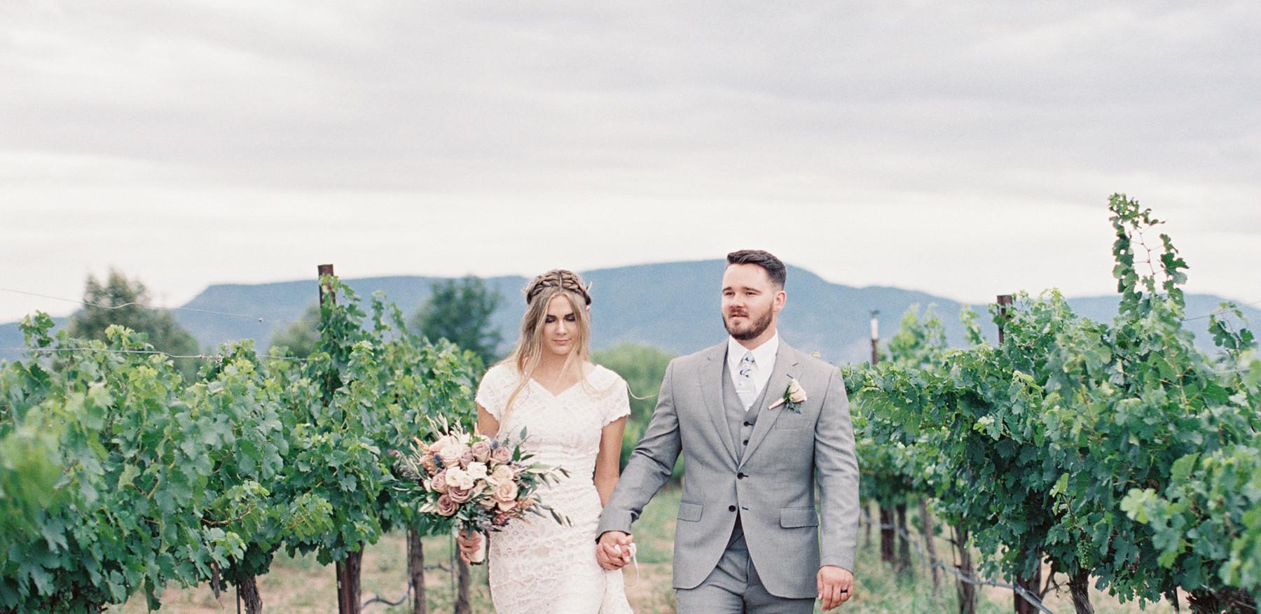 Alcantara vineyards, Cottonwood AZ
