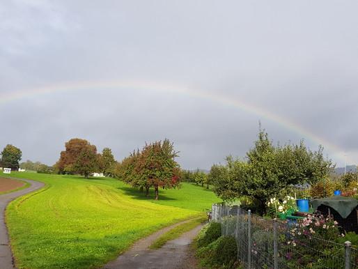 Resilienz und Regenbogen