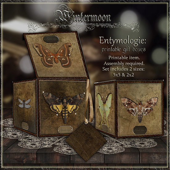 Entymologie Printable gift Box Set