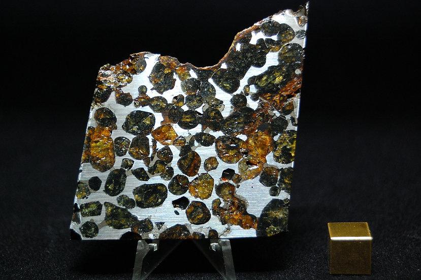 Sericho Pallasite 74.2 grams