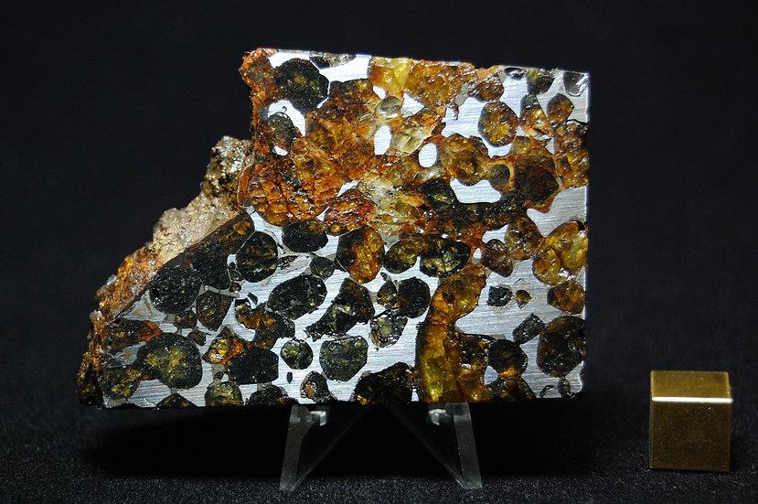 Sericho Pallasite 97 grams