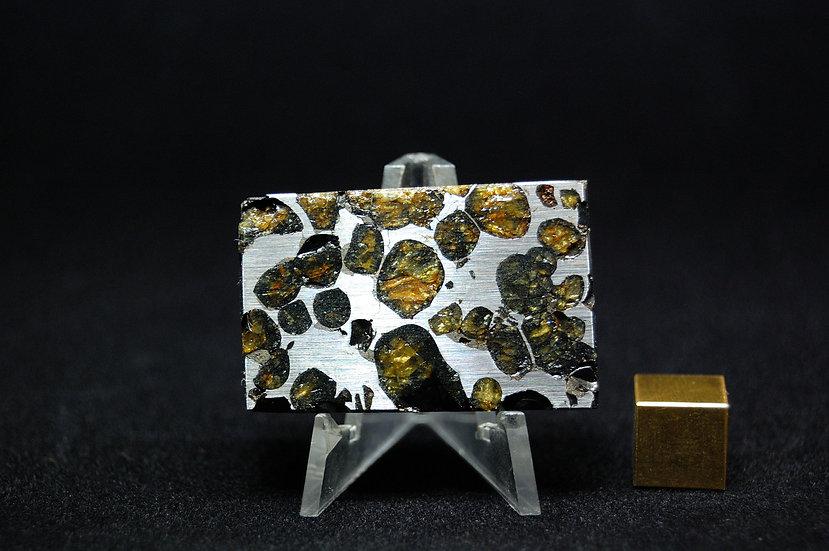 Sericho Pallasite 28.2 grams