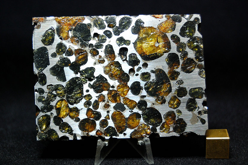 Sericho Pallasite 123.4 grams
