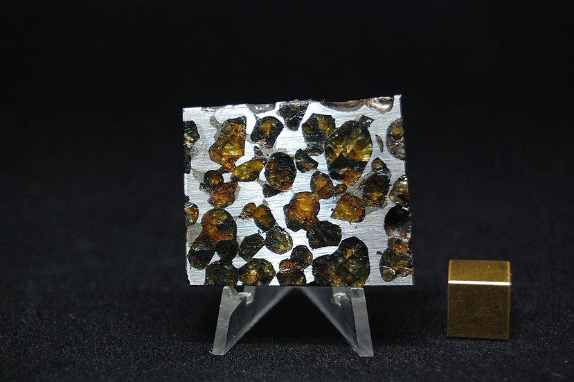 Sericho Pallasite 35.3 grams