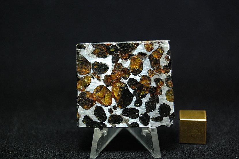 Sericho Pallasite 32.3 grams
