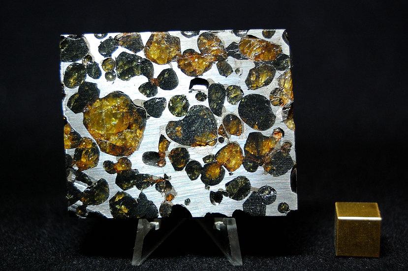 Sericho Pallasite 92.8 grams