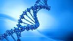 DNA-blue-dreamstime_edited_edited.jpg