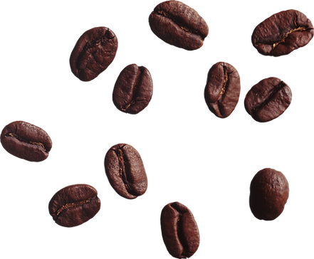 coffee_beans_PNG9271.png