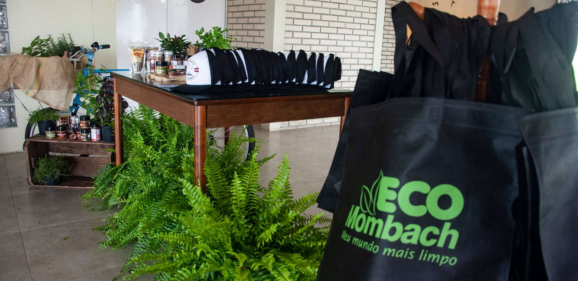 sacolas ecologicas.jpg