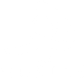 The Hustle LOGO