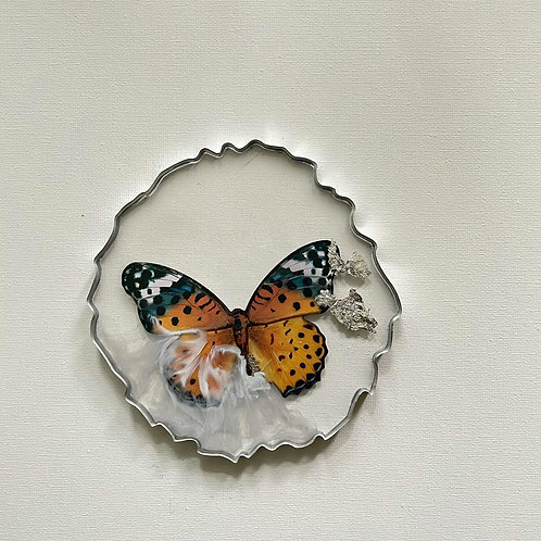 Flutter Flutter Monarch Coasters
