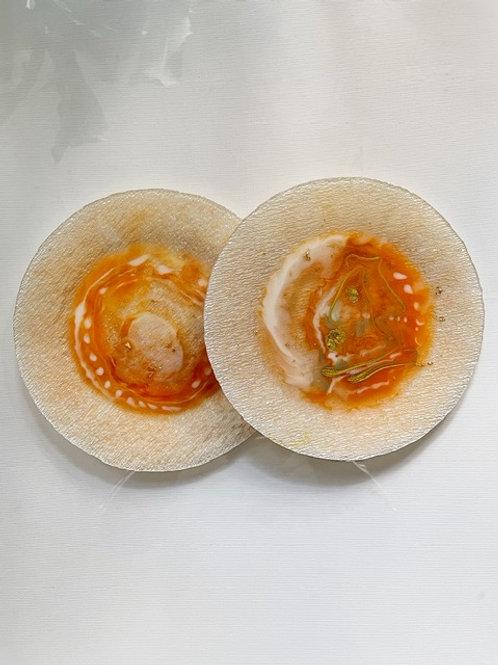 Orange Resin Plate Set