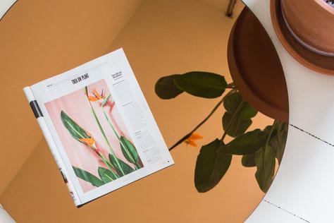 Plant column for De Morgen