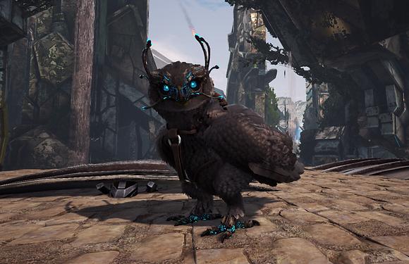 321 All Black Owl Clone Pc PvE