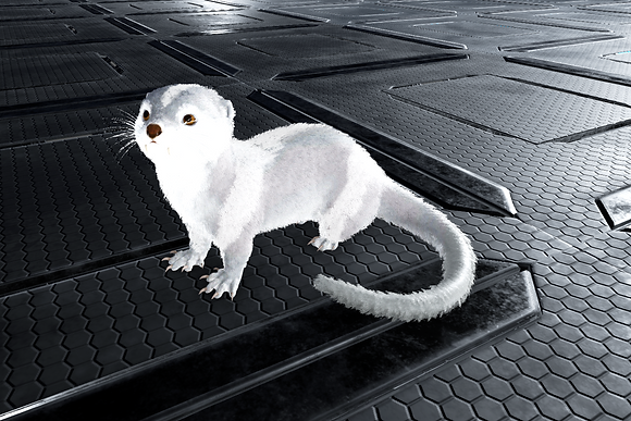 Full Albino Ab Otter (Pc PvE)