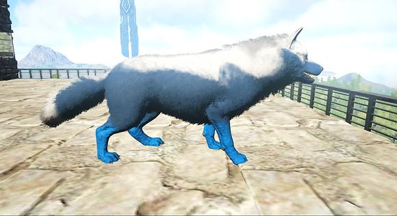 326 Unleveled Wolf