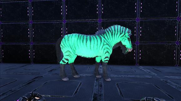 303 Mint/Black Equus (Pc PvE)