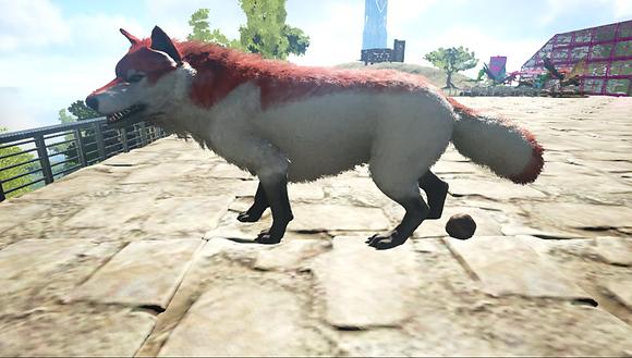 334 Unleveled Wolf