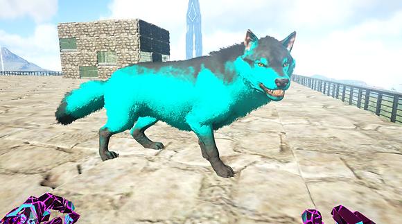 362 Unleveled Wolf
