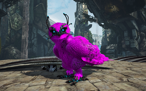 208 All Magenta Owl Clone Pc PvE