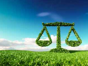 MARITIME INDUSTRY AND ENVIRONMENTAL LAW