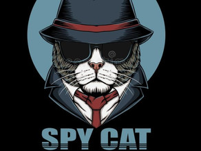 SPY CATS- PROJECT ACOUSTIC KITTY