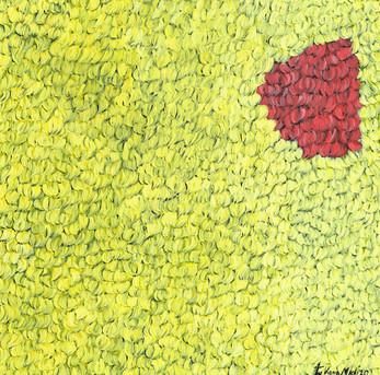 Kana Mick Fellquadrat gelb-rot.jpg