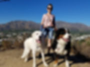 best dog walking services in La Crescenta and Sylmar